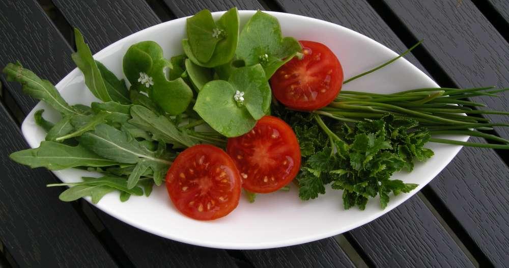 Det grønne drys fra haven eller altanen