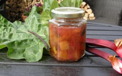 Rabarberkompot – brug den som dressing på grøn salat og til mange andre dejlige retter
